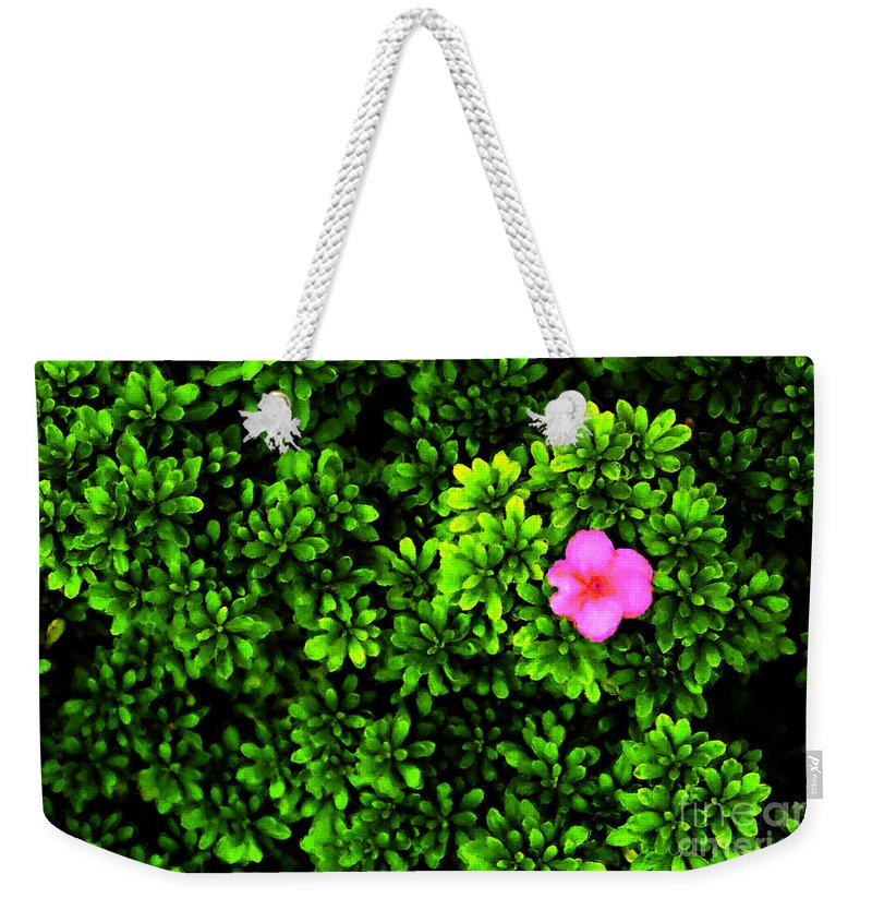 Painting Weekender Tote Bag featuring the photograph A Painting Azalea On Boxwoods by Mike Nellums