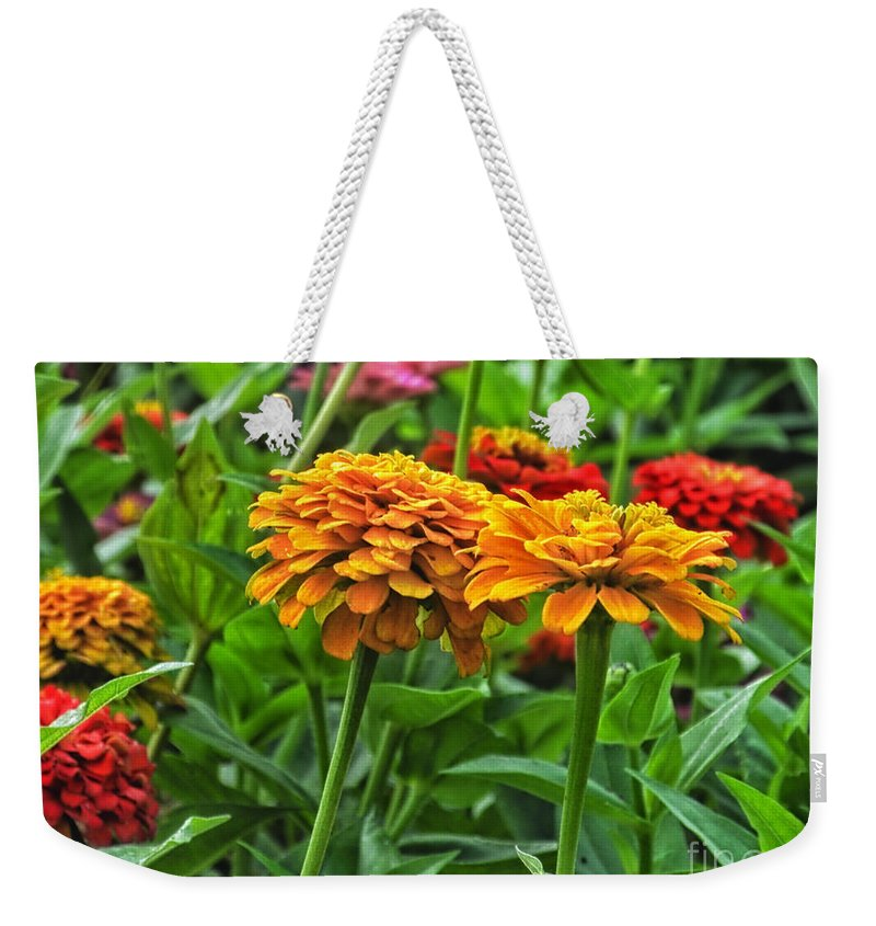 Floral Weekender Tote Bag featuring the photograph A Pair Of Yellow Zinnias 03 by Thomas Woolworth