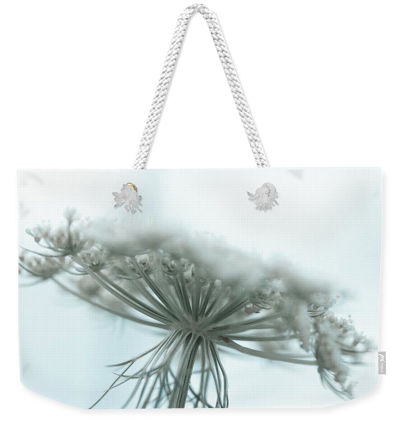 Queen Anne's Lace Weekender Tote Bag featuring the photograph A Place For Us To Dream by Shane Holsclaw