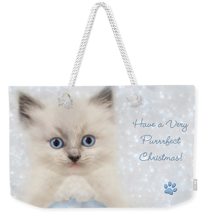 Cat Weekender Tote Bag featuring the photograph A Purrrfect Christmas by Lori Deiter