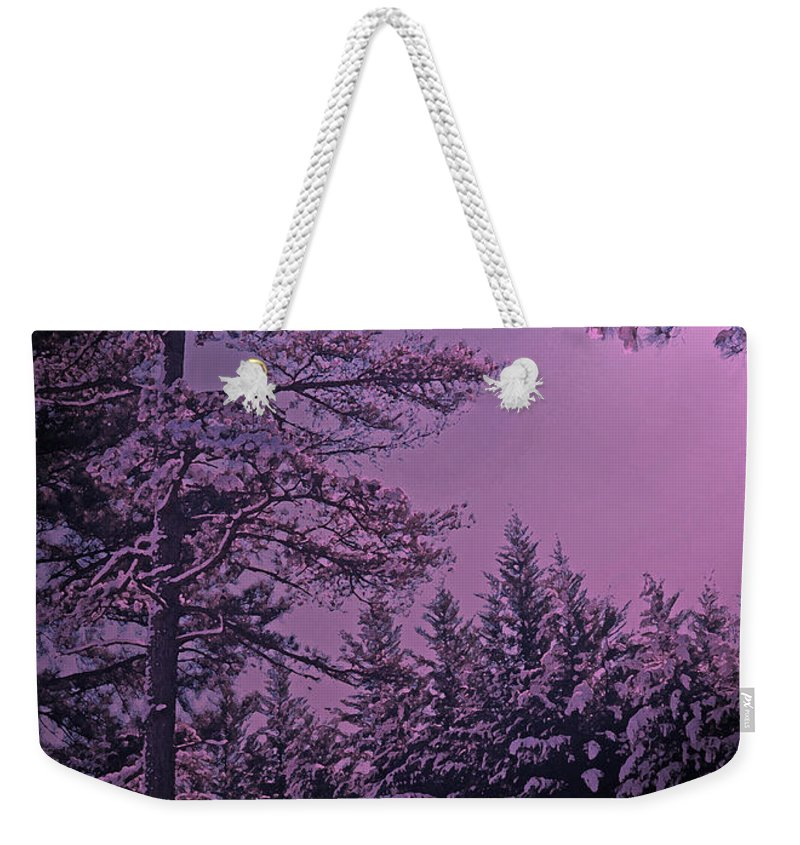 A Quiet Snowy Night Weekender Tote Bag featuring the photograph A Quiet Snowy Night by Lydia Holly
