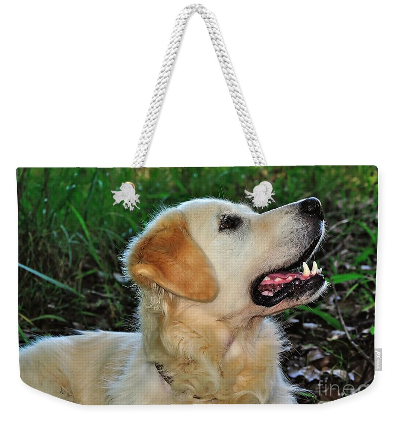 Photography Weekender Tote Bag featuring the photograph A Retriever's Loving Glance by Kaye Menner