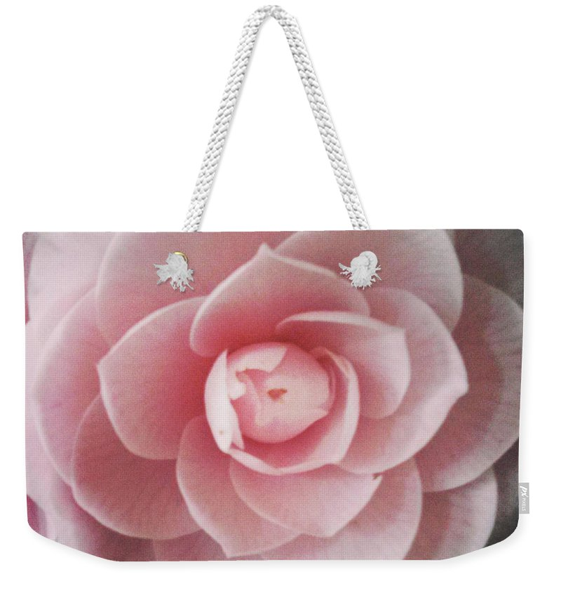 Rose Weekender Tote Bag featuring the photograph A Rose Is A Rose Is A Rose by Michael Merry