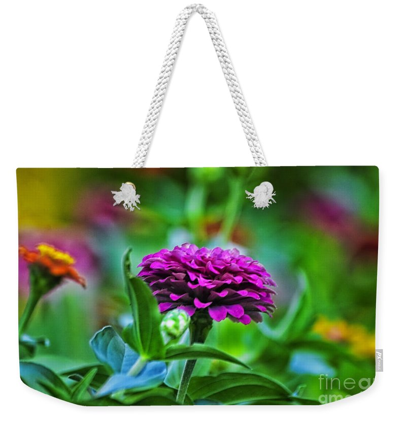 Floral Weekender Tote Bag featuring the photograph A Sea Of Zinnias 12 by Thomas Woolworth