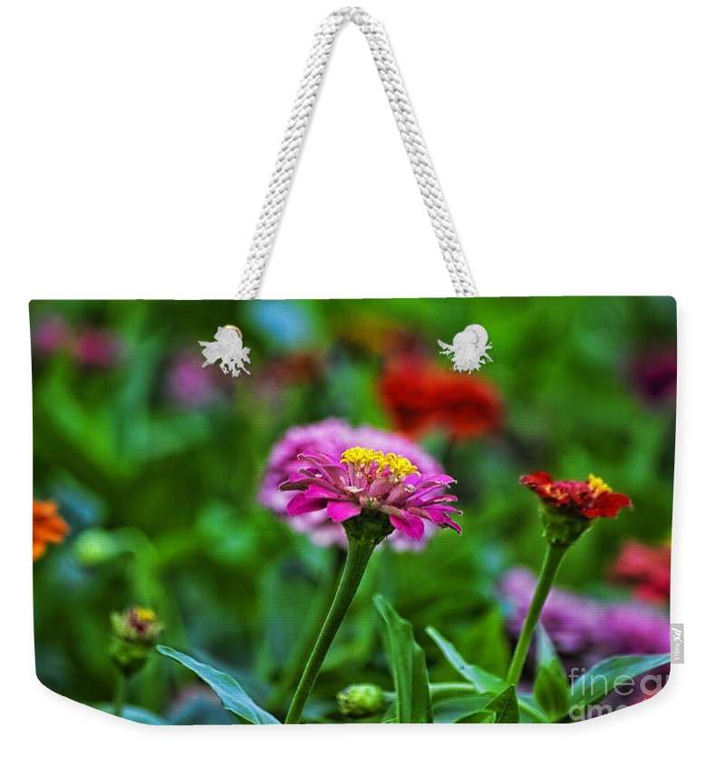 Floral Weekender Tote Bag featuring the photograph A Sea Of Zinnias 13 by Thomas Woolworth