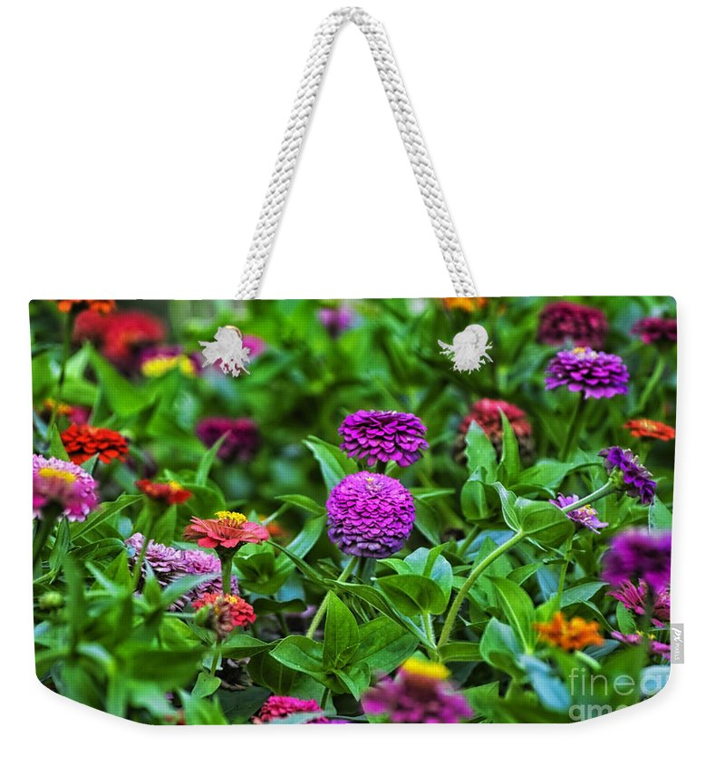 Floral Weekender Tote Bag featuring the photograph A Sea Of Zinnias 14 by Thomas Woolworth