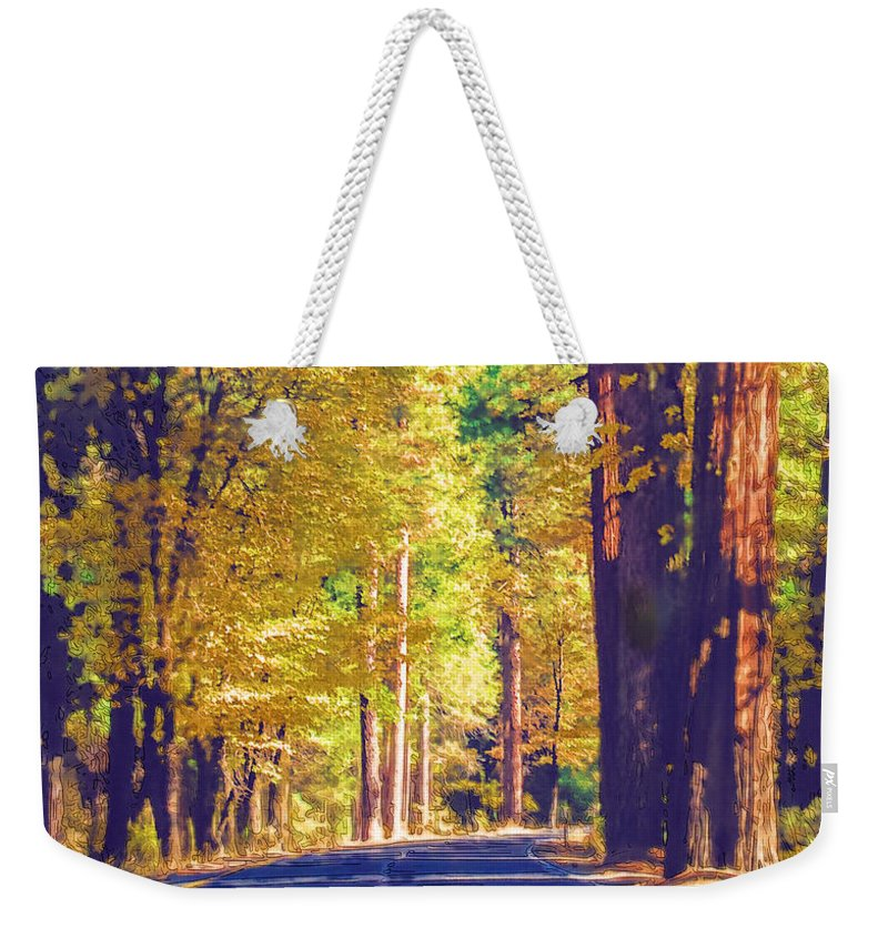 Yosemite Weekender Tote Bag featuring the photograph A Shady Drive Through Yosemite by Susan Eileen Evans