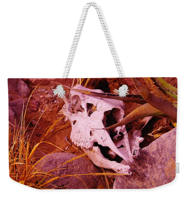 Skulls Weekender Tote Bag featuring the photograph A Skull In The Rocks by Jeff Swan