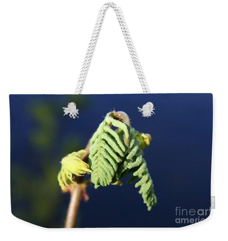 Leaf Weekender Tote Bag featuring the photograph A Spring Beginning by Neal Eslinger