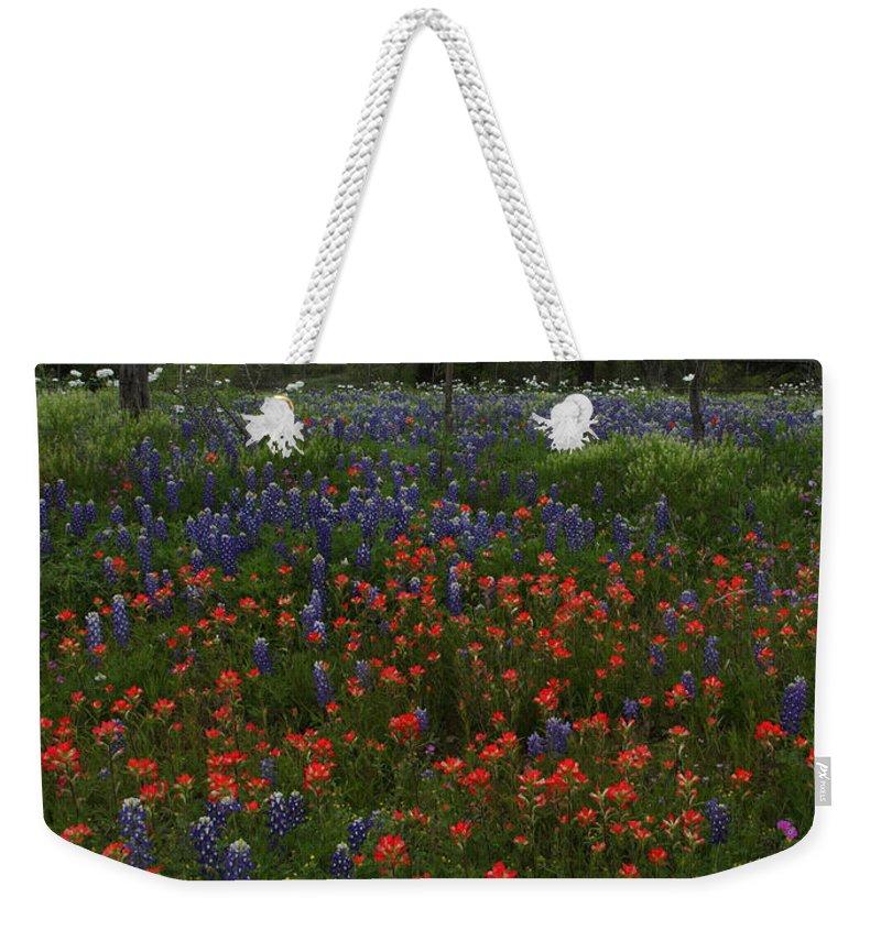 Texas Weekender Tote Bag featuring the photograph A Texas Roadside by Susan Rovira