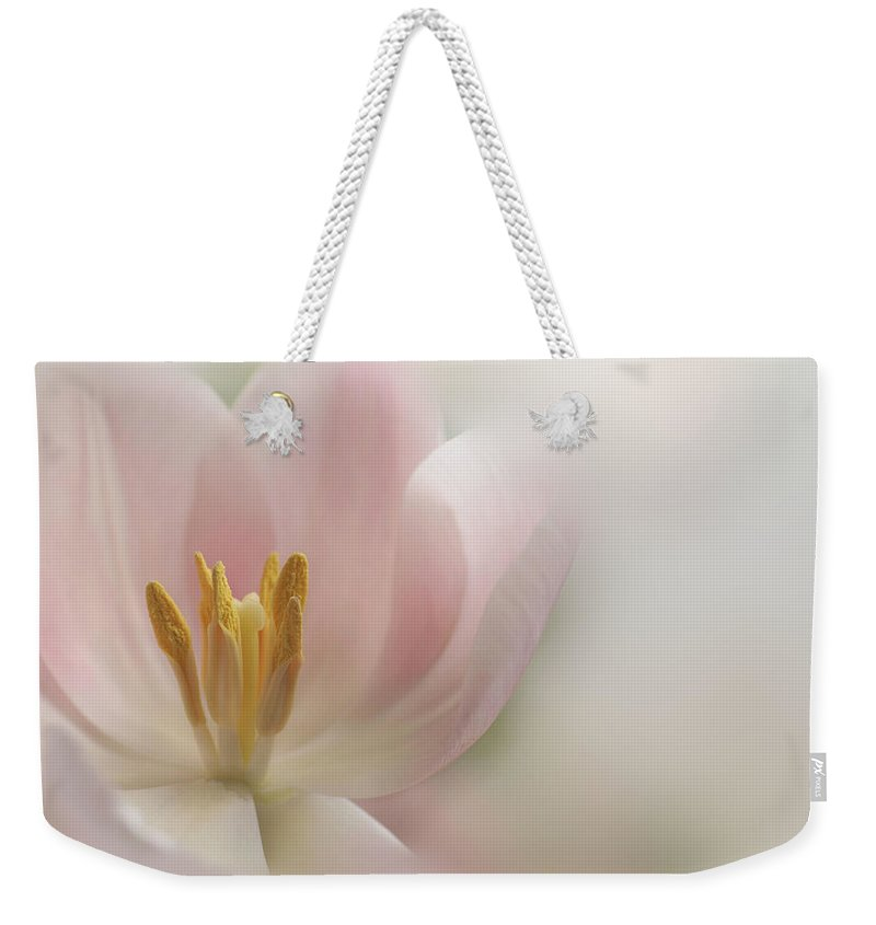 Floral Weekender Tote Bag featuring the photograph A Touch Of Pink by Annie Snel