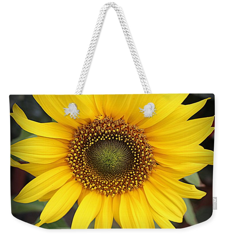 Sunflower Weekender Tote Bag featuring the photograph A Touch Of Sunshine - Sunflower by Dora Sofia Caputo Photographic Design and Fine Art