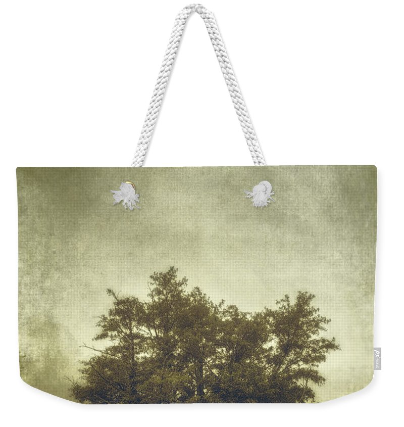 Tree Weekender Tote Bag featuring the photograph A Tree In The Fog 2 by Scott Norris