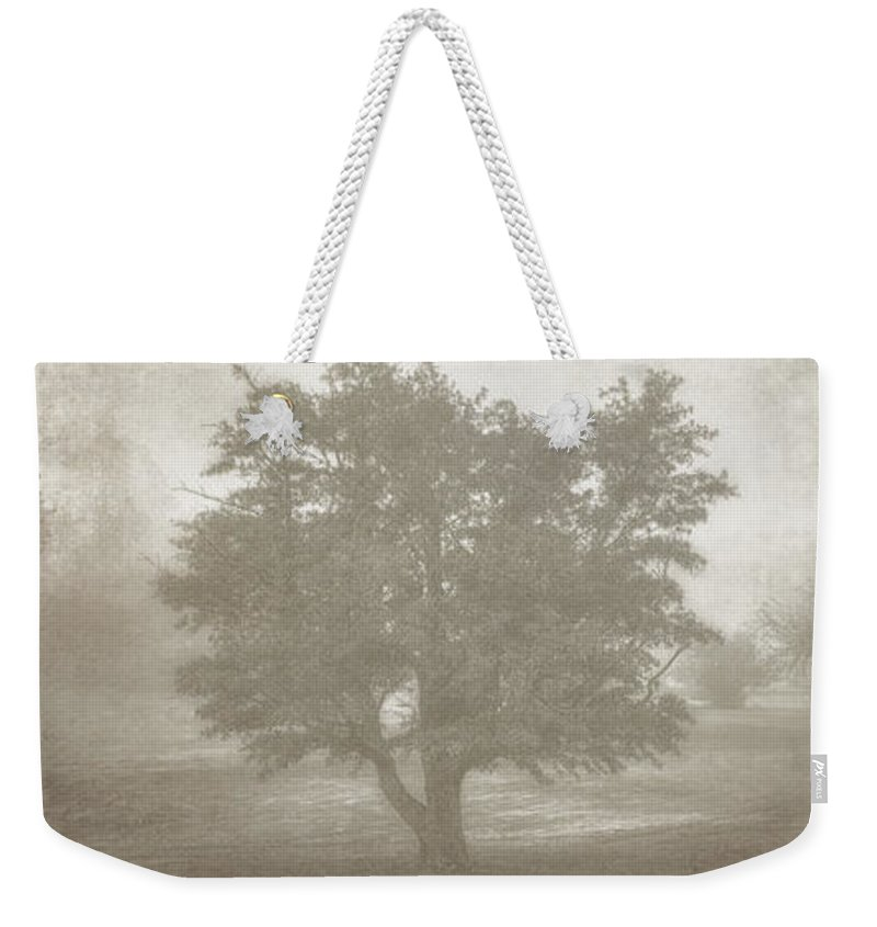 Tree Weekender Tote Bag featuring the photograph A Tree In The Fog 3 by Scott Norris