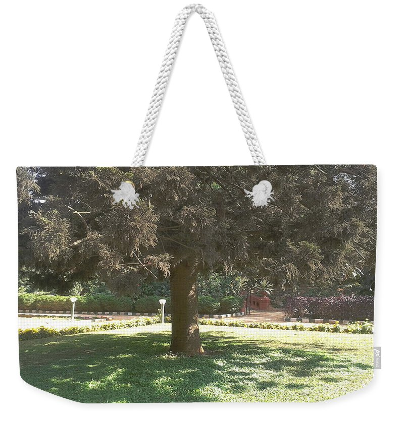 Tree Weekender Tote Bag featuring the photograph A Tree by Artist Nandika Dutt