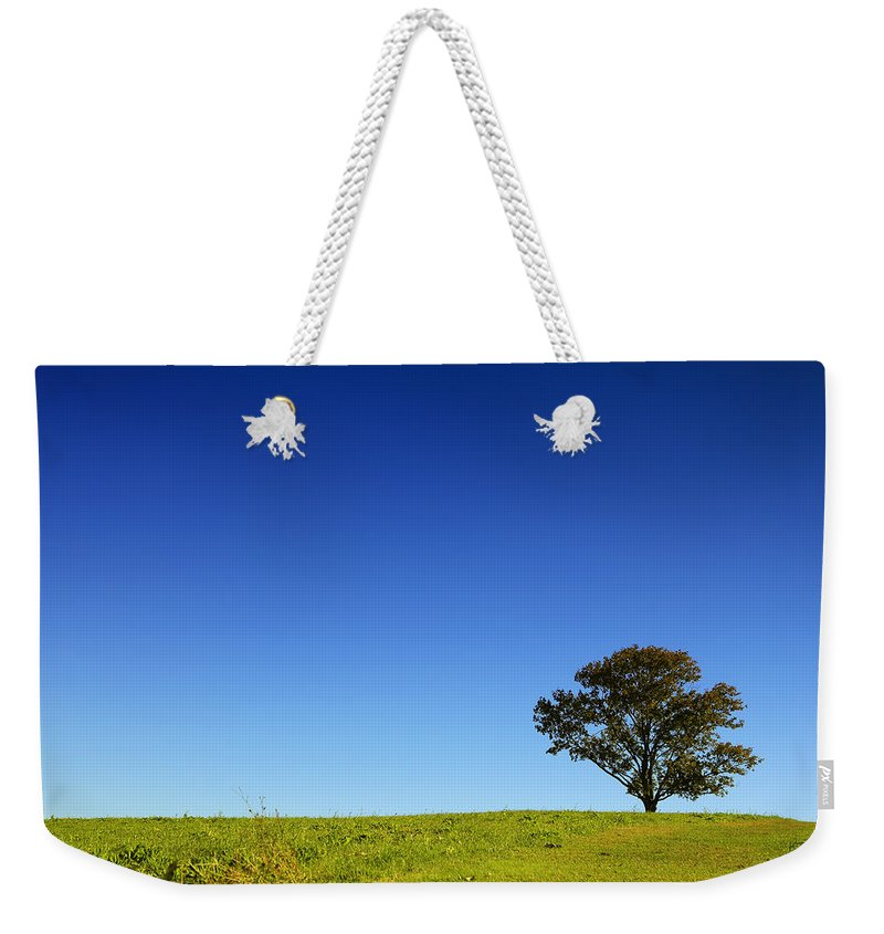 Landscape Weekender Tote Bag featuring the photograph A Tree Stands Alone by Karol Livote