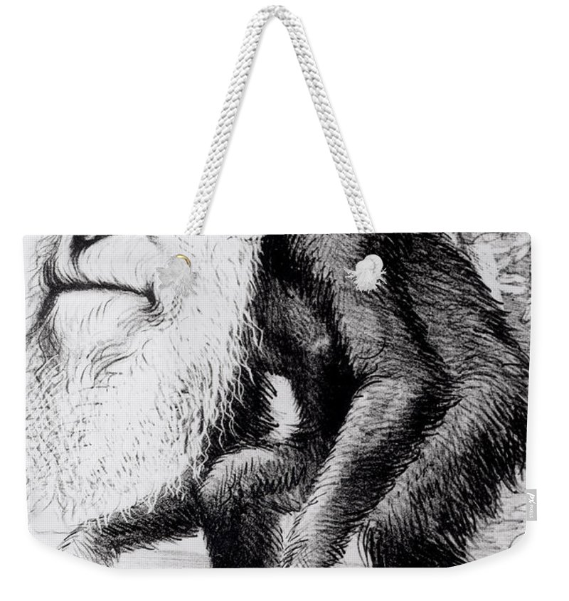 Evolutionary Weekender Tote Bag featuring the painting A Venerable Orang Outang by English School