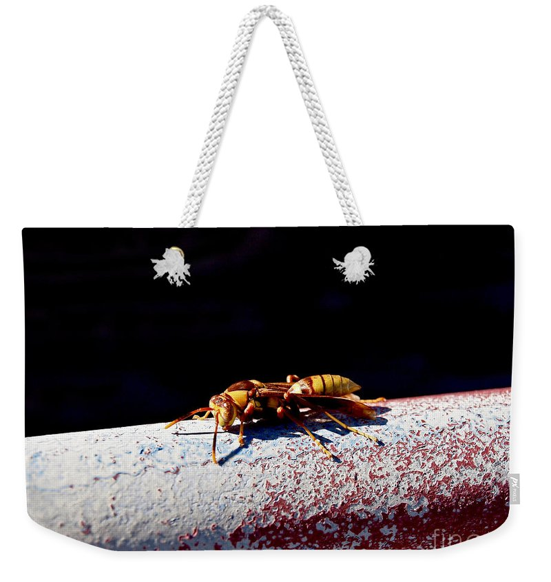 America Weekender Tote Bag featuring the photograph A Vespid Wasp by Howard Stapleton