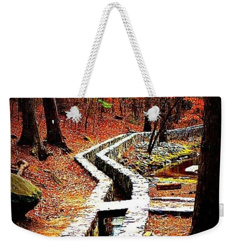 Walk Weekender Tote Bag featuring the photograph A Walk Through The Woods by Tara Potts