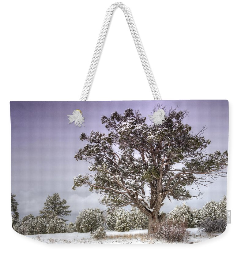 Winter Weekender Tote Bag featuring the photograph A Winter's Day by Saija Lehtonen