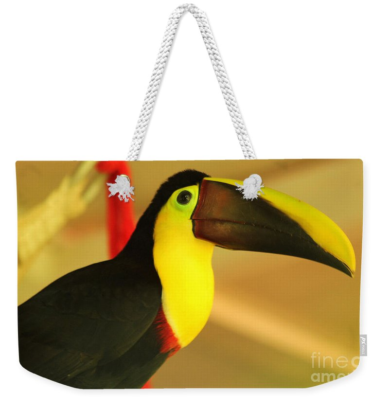 Toucan Weekender Tote Bag featuring the photograph About A Beak by Kris Hiemstra