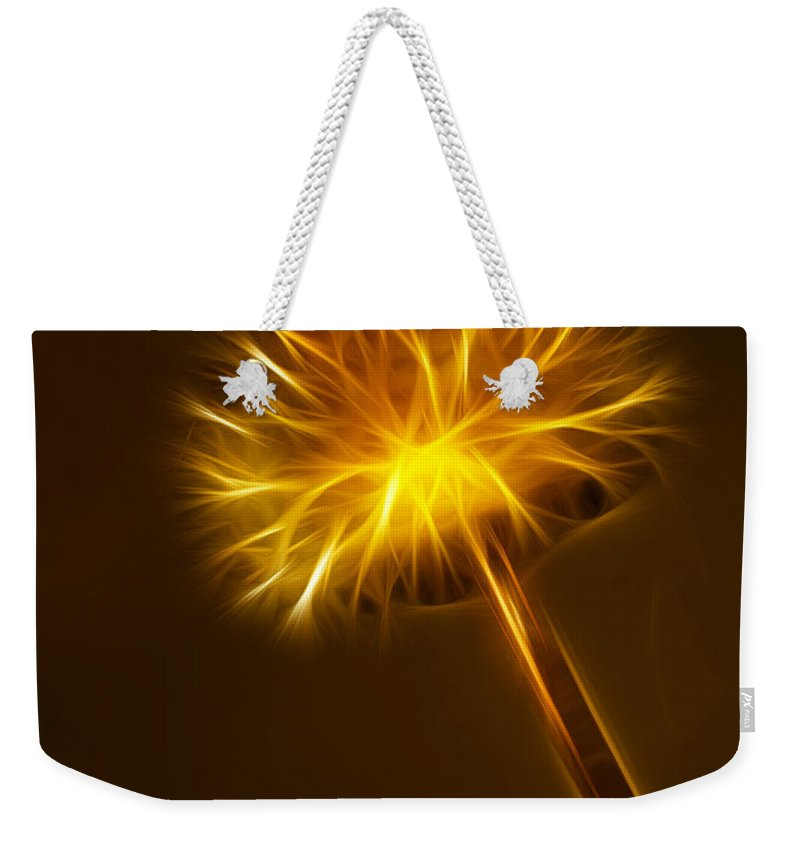 Abstract Weekender Tote Bag featuring the photograph Abstract Of Nature 1 by Vivian Christopher