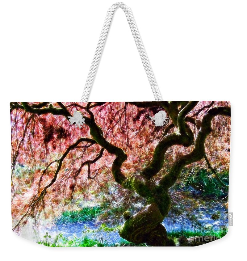 Acer Tree Weekender Tote Bag featuring the photograph Acer Abstract by Susie Peek
