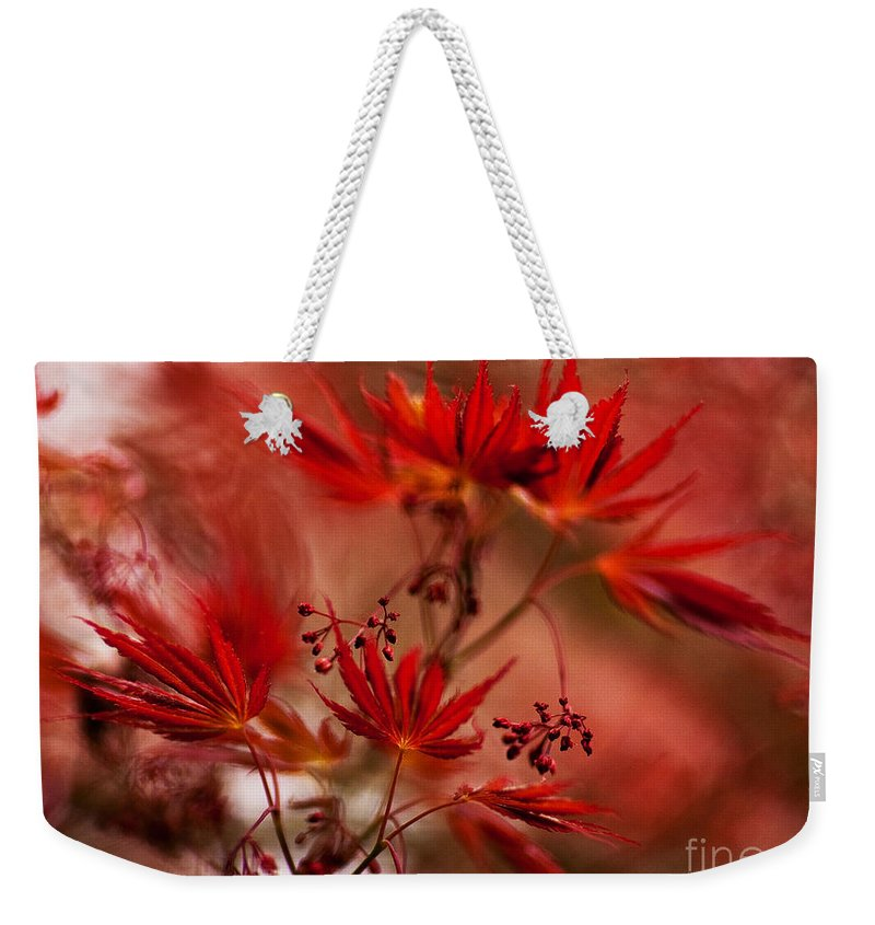 Acer Weekender Tote Bag featuring the photograph Acer Storm by Mike Reid