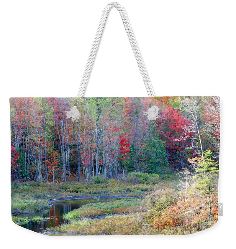 Trees Weekender Tote Bag featuring the photograph Adirondack Fall by Mariarosa Rockefeller