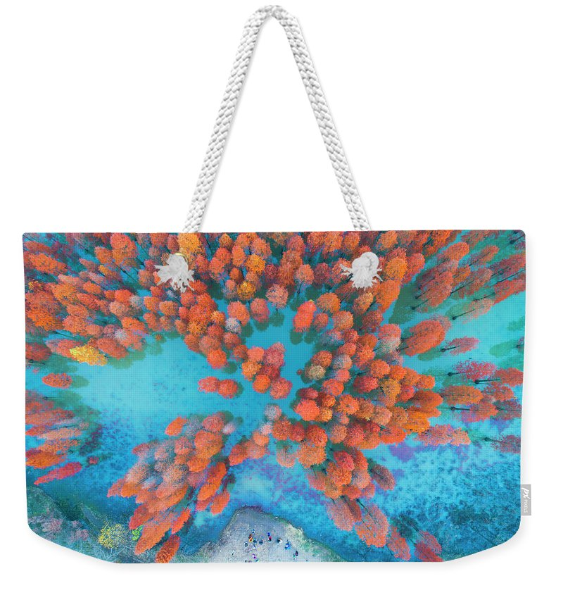 Tranquility Weekender Tote Bag featuring the photograph Aerial Drone View With Fir Tree Fall by Yaorusheng