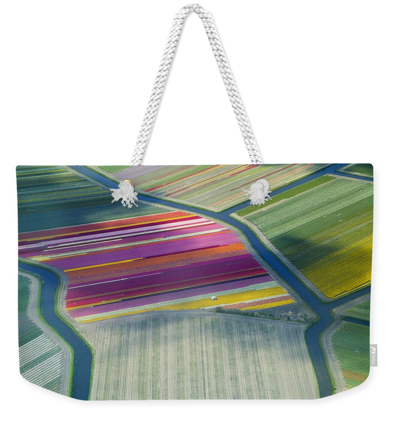 Curve Weekender Tote Bag featuring the photograph Aerial View Of Flower Fields In Spring by Frans Sellies