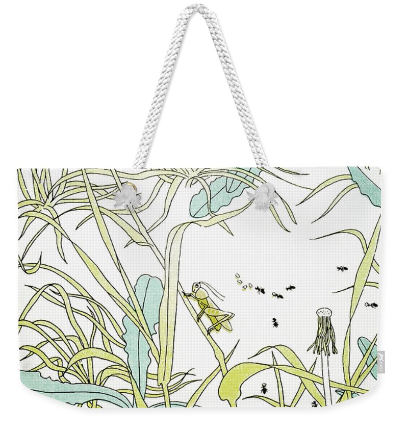 Aesop Weekender Tote Bag featuring the photograph Aesop: Ant & Grasshopper by Granger