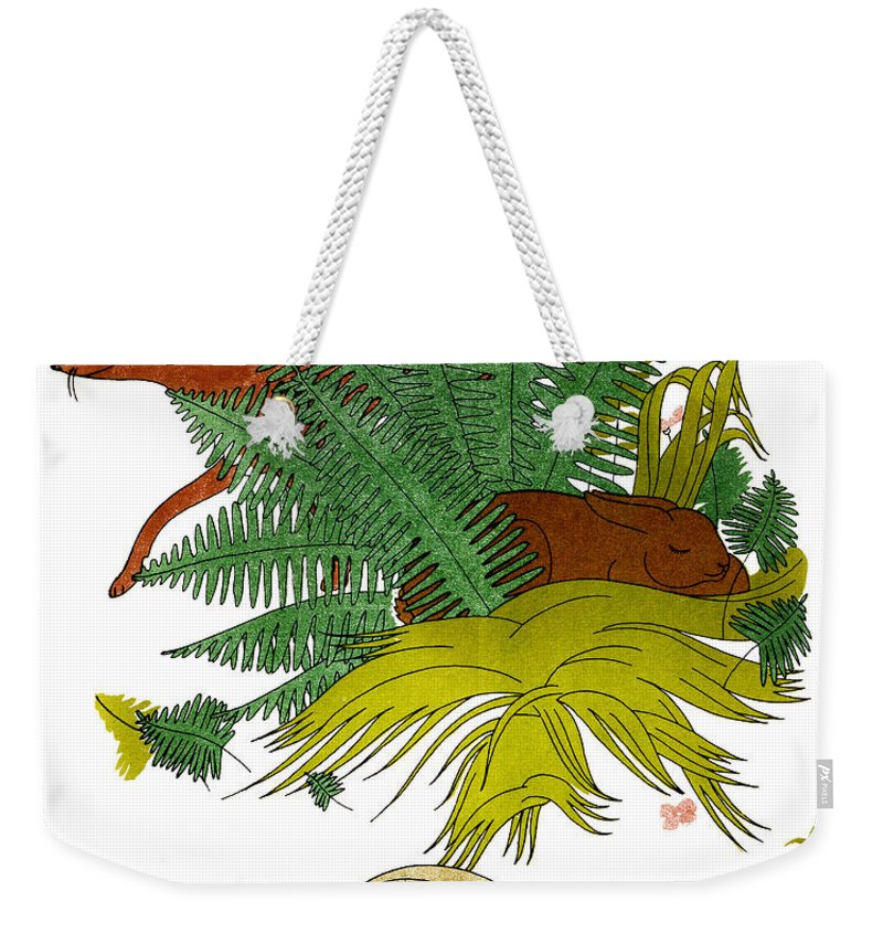 Aesop Weekender Tote Bag featuring the photograph Aesop: Tortoise & The Hare by Granger