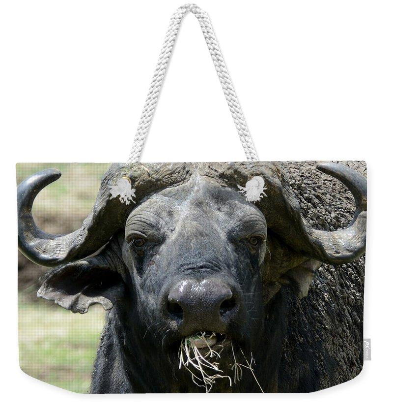 African Buffalo Weekender Tote Bag featuring the photograph African Buffalo by Ian Ashbaugh