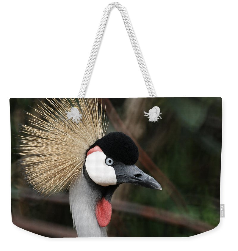 African Crowned Crane Weekender Tote Bag featuring the photograph African Crowned Crane by Ernie Echols