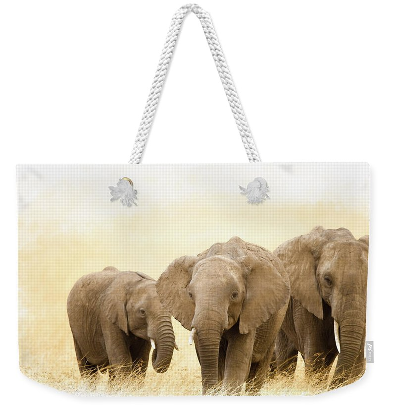 African Elephants Weekender Tote Bag featuring the digital art African Elephants by Don Kuing