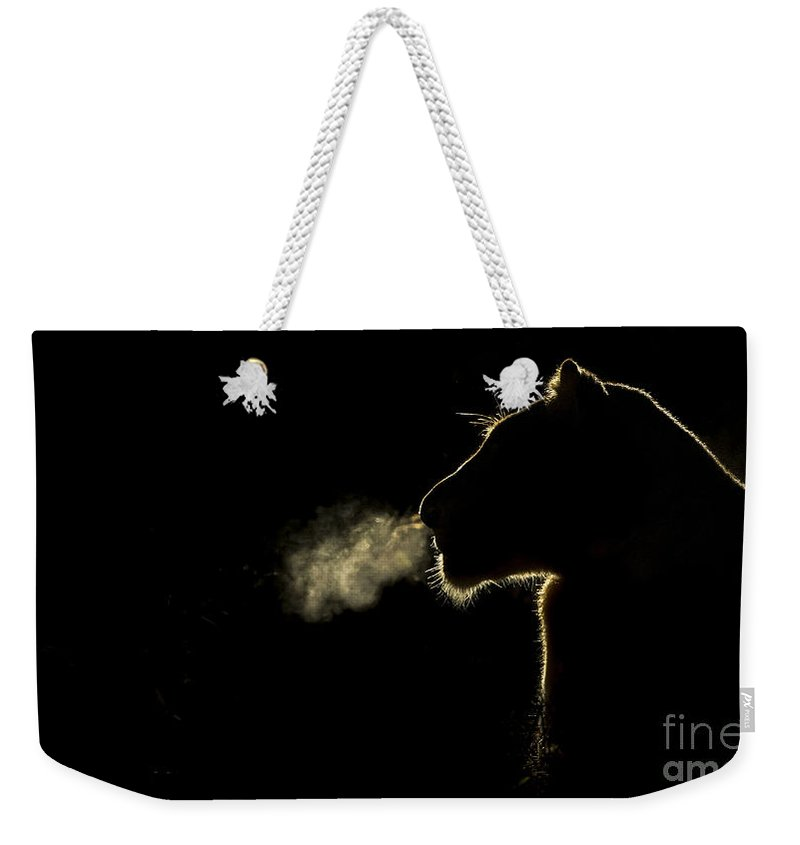 Nis Weekender Tote Bag featuring the photograph African Lioness Breath Sabi Sands South by Brendon Cremer