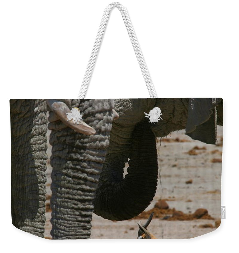 Elephant Weekender Tote Bag featuring the photograph African Waterhole by Bruce J Robinson