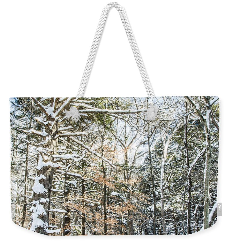 Snow Weekender Tote Bag featuring the photograph After The Storm by Jonathan Steele