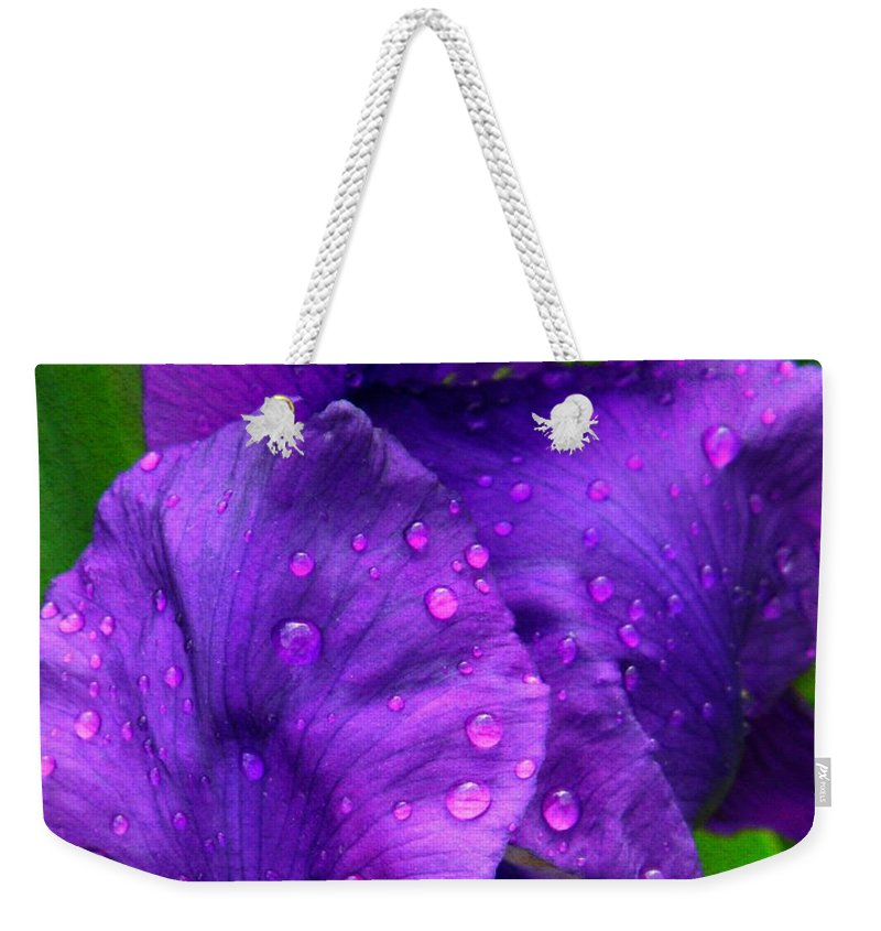 Nature Weekender Tote Bag featuring the photograph After The Sunshower by Chris Berry