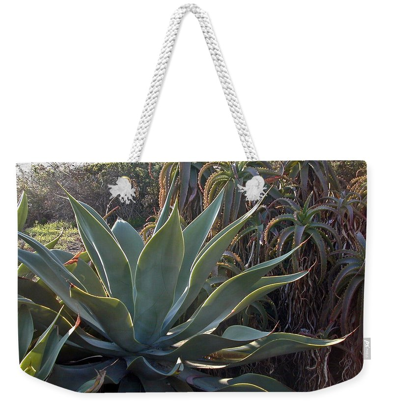 Agave Weekender Tote Bag featuring the photograph Agave by Douglas Barnett