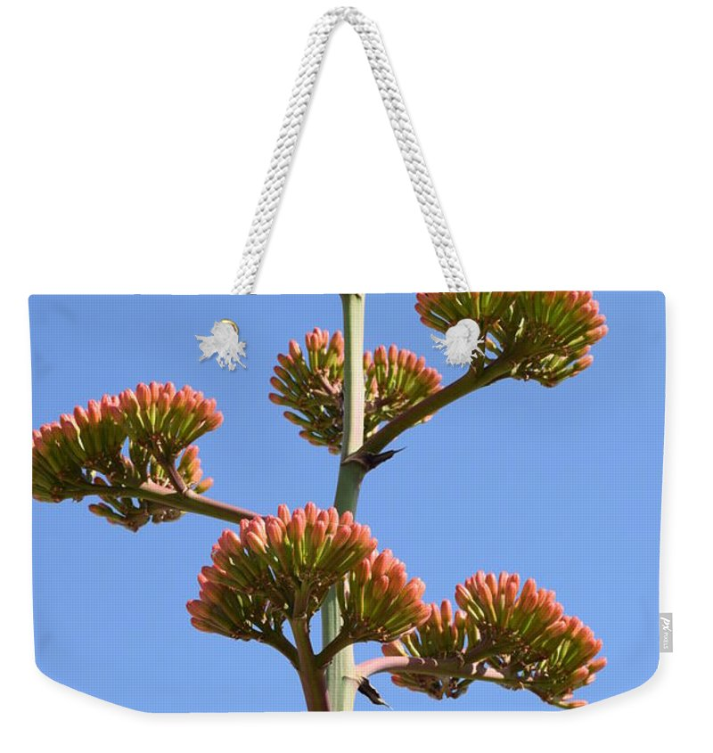 Agave Weekender Tote Bag featuring the photograph Agave Flowers II by Shar Schermer