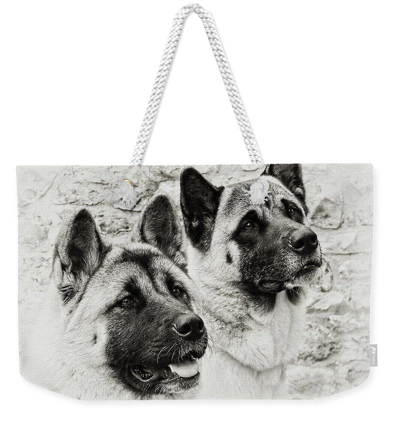 Dog Weekender Tote Bag featuring the photograph Akitas by Susie Peek