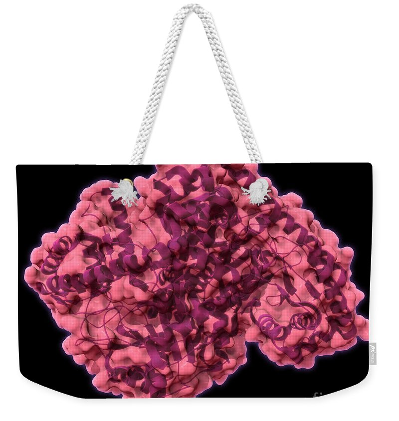 3d Model Weekender Tote Bag featuring the photograph Alanine Transaminase, Molecular Model by Evan Oto