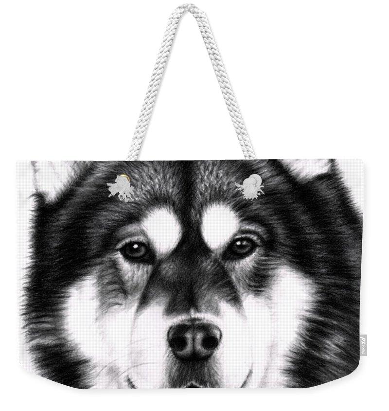 Dog Weekender Tote Bag featuring the drawing Alaskan Malamute Portrait by Nicole Zeug
