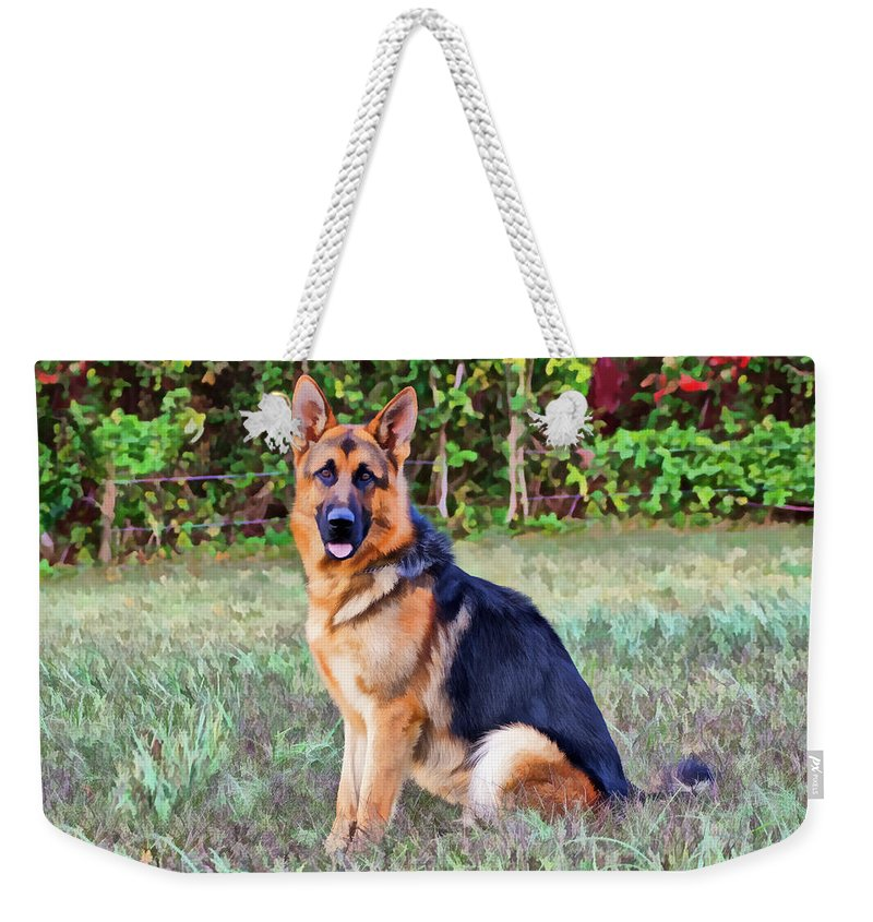 German Shepherd Weekender Tote Bag featuring the photograph Albert by Sandy Keeton