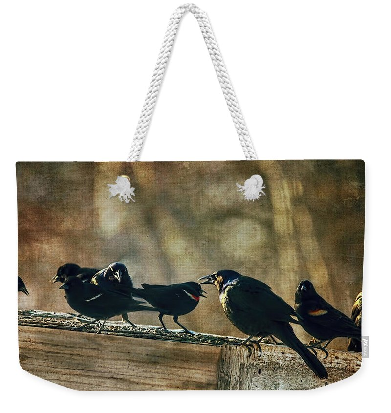 Grackles Weekender Tote Bag featuring the photograph All The Usual Suspects by Sue Capuano