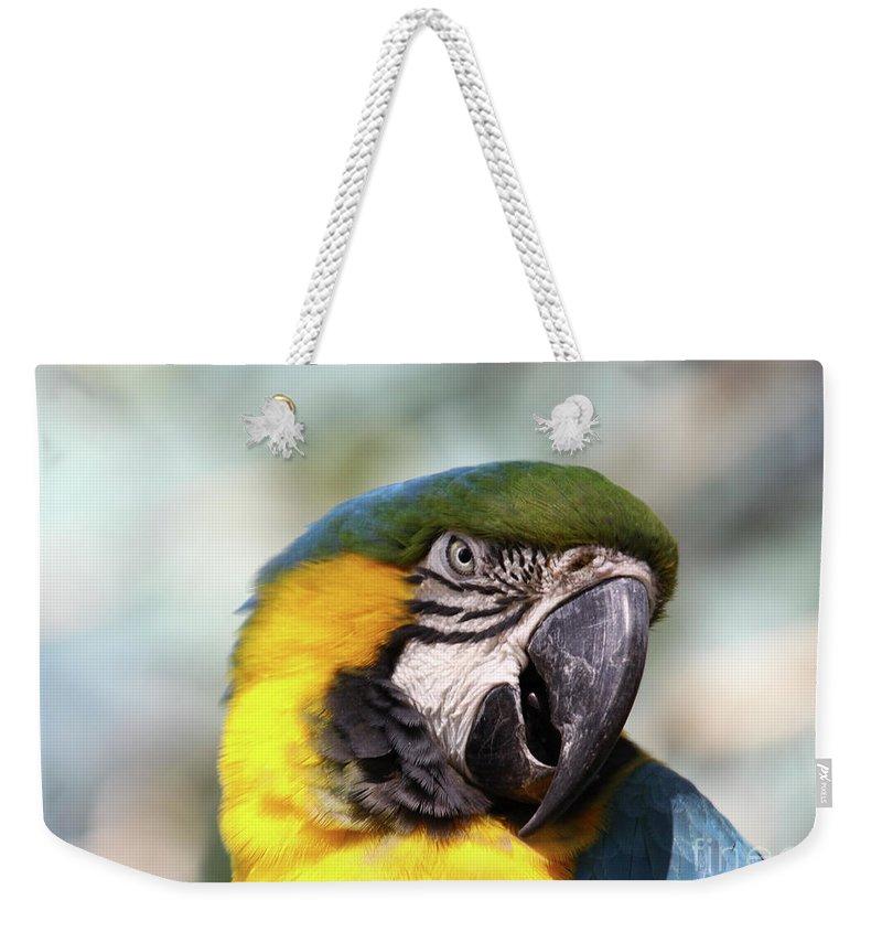 Macaw Weekender Tote Bag featuring the photograph Alligator Farm Resident by Deborah Benoit