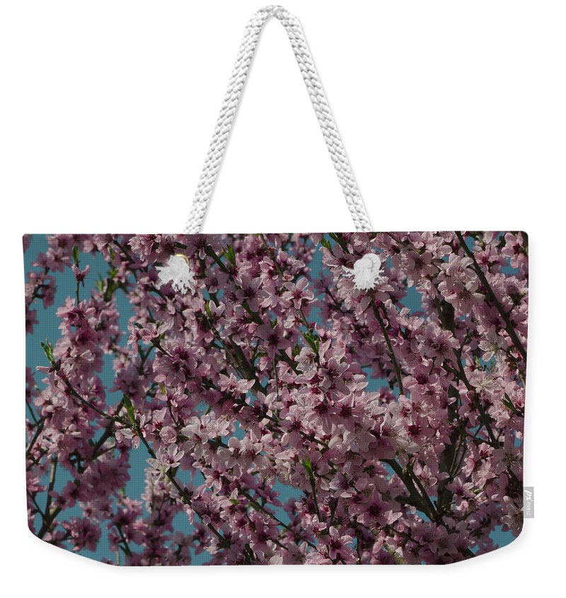 Almond Weekender Tote Bag featuring the photograph Almond Blossoms by TouTouke A Y