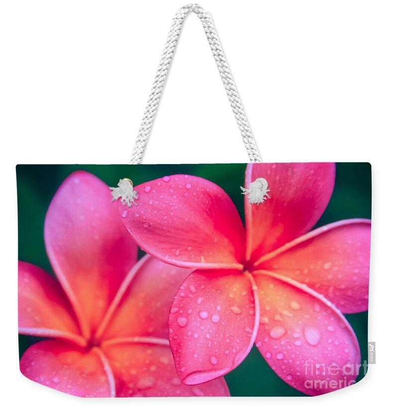 Aloha Weekender Tote Bag featuring the photograph Aloha Hawaii Kalama O Nei Pink Tropical Plumeria by Sharon Mau